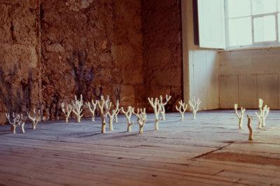 recovecos del enigma  --  instalaciooon  --  fotografiiia 1